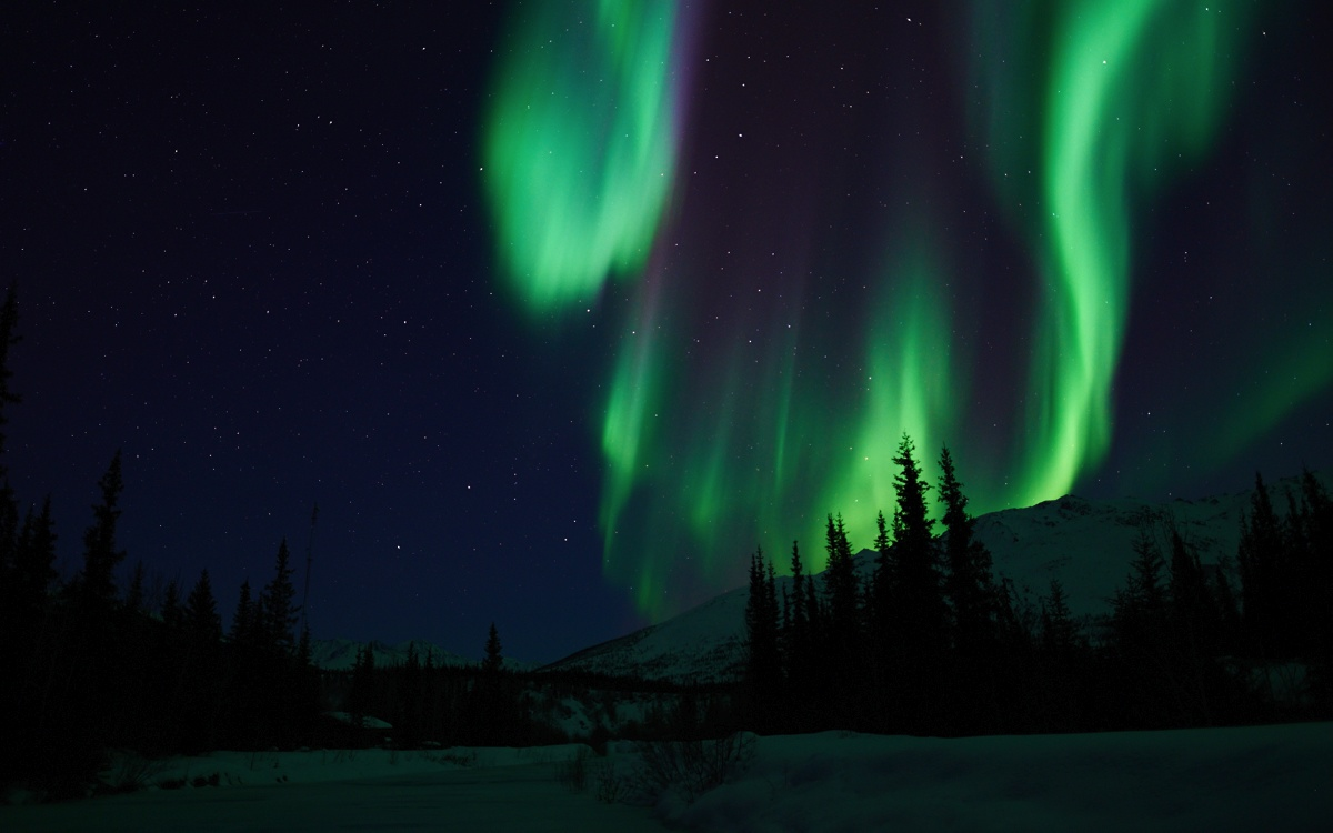 northern light photo gallery  aurora borealis in alaska and california