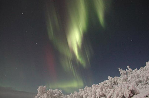 Northern Lights Alaska Aurora Fairbanks