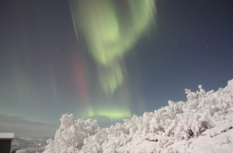 Northern Lights Alaska Aurora Snow